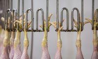 Iš Ukrainos uždrausta importuoti paukštieną ir jos gaminius