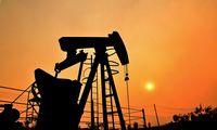 Nafta pigiausia per metus: kaina svyruoja apie 50 USD