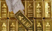 Aukso kaina – 7 metų pike