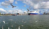 Klaipėda už 36 mln. Eur ieško rangovo Baltijos pr. atnaujinti