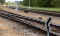 """""""Rail Balticos"""" ruožo Rokai-Palemonas dvikelis bus tiesiamas vienu etapu"""