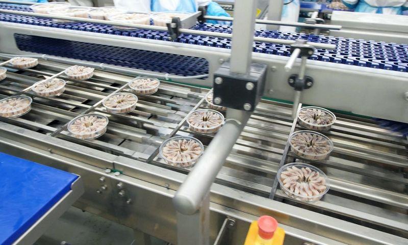 """Įsidiegus sandėlio valdymo sistemą, """"ICECO Holding"""" įmonių grupei pavyko optimizuoti visą gamybos procesą. Bendrovės nuotr."""