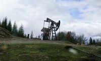 Nafta atpigo 10%: nebekainuoja nė 30 USD už barelį