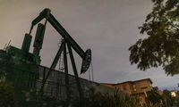 Nafta pinga 24%,tekainuoja 20 USD:trečia blogiausia diena istorijoje