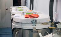 Europa atsipeikėjo: vaistų gamyba sutelkta Hubėjuje, Kinijoje