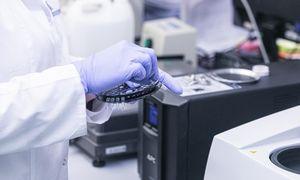 Prie koronaviruso testavimo tinklo jungiasi privatūs centrai