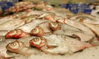Prikepęs žuvų pardavėjos obligacijų platinimas: teko skolinti sau pačiai