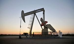 D. Trumpas ieško sprendimų dėl smukusių naftos kainų