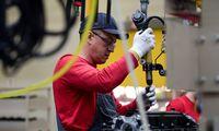 Bendras euro zonos PMI kovą krito į rekordiškai žemą lygį