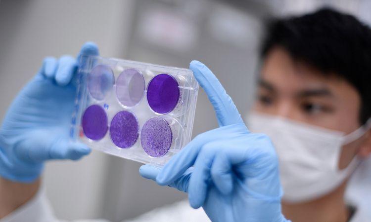 Lenktynės su virusu: vakcina pandemijos piko nepasivys