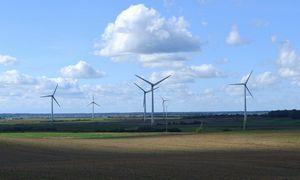 """""""Domimaks"""" Panevėžio rajone planuoja vėjo elektrines"""