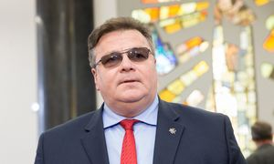 L. Linkevičius: tvirtinti tokio turinio Mobilumo paketą – nepateisinama