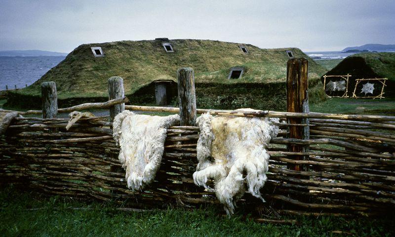 """""""L'Anse aux Meadows"""" - archeologinė vietovė Niufaundlendo saloje, Kanadoje. Joje 1960 m. rastos vikingų kaimelio liekanos. Jurgen Sorges (""""Akg-images""""/""""Scanpix"""") nuotr."""