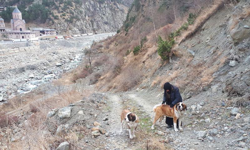 Pasivaikščiojimas su šunimis. Jurgos Vilpišauskaitės nuotr.