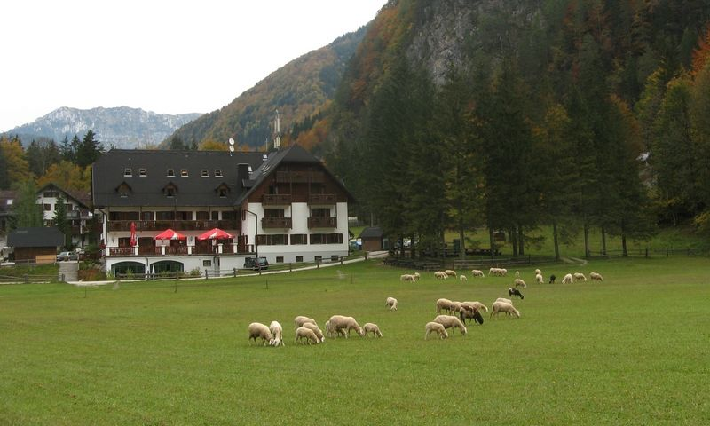Slovėnija, Alpės. VŽ archyvo nuotr.