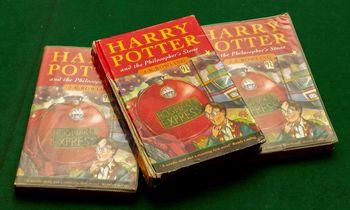 Šiukšlių dėžėje rasta knyga apie Harry Potterį parduota už 33.000 GBP