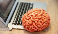 Dirbtinio intelekto lietuvių kalbos mokymams – 4 mln. eurų