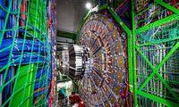 Narystė CERN jau atsiperka:pardavimai šiai organizacijai pernai pasiekė 0,5 mln. Eur