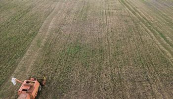 Smulkieji ūkininkai gali tikėtisiki1.000 Eurišmokų