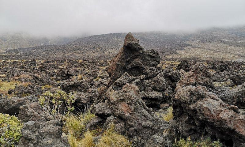 Pakeliui į Tongaryro kalnų perėją žemė nusėta sustingusiais lavos gabalais. Rimvydo Ragausko nuotr.