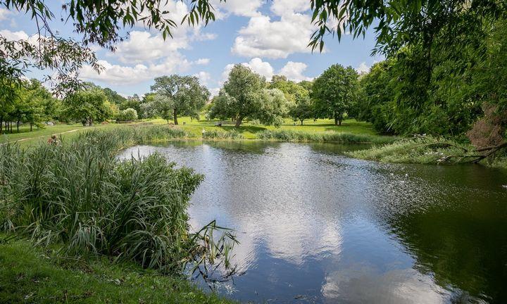 Pažadas: Misionierių sodai Vilniuje išvengs trinkelių