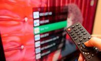 Radijo ir televizijos komisijai bus rekomenduota drausti RT programas