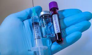 """Eksperimentinei """"Pfizer"""" vakcinai pavyko sukurti antikūnus"""