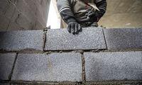 Proga laisvam kapitalui, kuria dažnas Lietuvoje bijo pasinaudoti