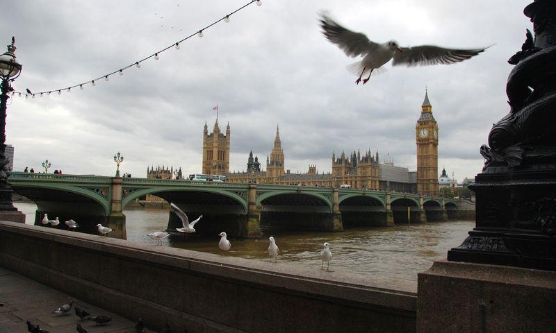 Londonas, Vestminsterio rūmai. Ryto Staselio nuotr.