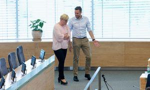 G. Landsbergis po rinkimų nemato galimybės dirbti tik su LLRA–KŠS