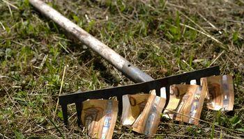ES biudžete siūloma sparčiau didinti išmokas Lietuvos žemdirbiams