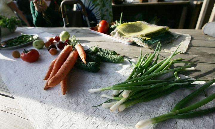 Klausimas gydytojui: ar vegetarai tikrai sveikesni