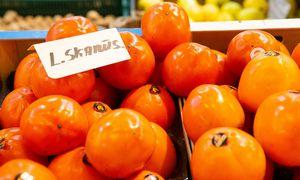 Apklausa: lietuviai nelegalias paslaugas renkasi dėl kainos, bet patys nori dirbi oficialiai