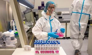 Daugiausiai naujų koronaviruso atvejų – Vilniaus ir Kauno apskrityse