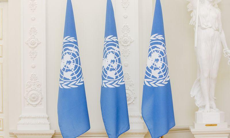 Jungtinių Tautų Organizacijos vėliavos. Vladimiro Ivanovo (VŽ) nuotr.