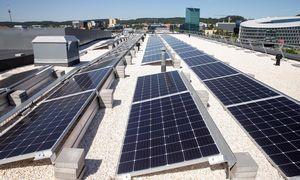 Investuotojai tiki saulės jėgainių startuoliais