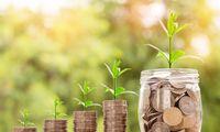 Kad pinigai nekauptų dulkių – 4 būdai įdarbinti santaupas