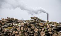 Energetikos viceministras žada teigiamus pokyčius Lietuvos biokuro gamintojams