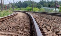 """J. Narkevičius: Lietuva svarsto """"Rail Baltica"""" tiesti viena"""