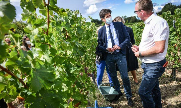 Vyno rinka: nerimo yra, tačiau kainos stabilios