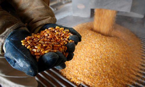 Antros kartos bioetanolio gamyba: atliekų gali tekti įsivežti