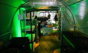 Agroverslo ir maisto pramonės atstovai rengia net 2 mėnesių trukmės hakatoną
