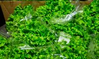 ŽŪM: žemės ūkio produktų eksportas šiemet augs bent 5%