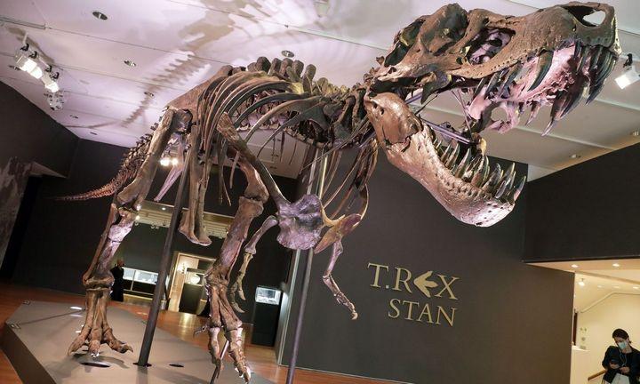 Už tiranozauro griaučius aukcione sumokėti 31,8 mln. USD