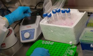Kuriančiuosius produktus COVID-19 ligai įveikti kviečia teikti paraiškas