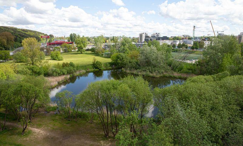 Vieta Vilniuje, kurioje bus japoniškas sodas. Juditos Grigelytės (VŽ) nuotr.