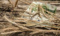 Žemdirbiai nenuskriausti: panikuojanti rinka brangiai graibsto rekordinį derlių