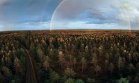 """INVL Asset Management"" kuria 100 mln. Eur žemės ir miškų fondą"