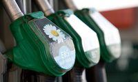 STT:draudimas biodegalams naudoti palmių aliejų skatins korupciją