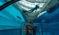 Lenkijoje atidarytas giliausias pasaulyje nardymo baseinas